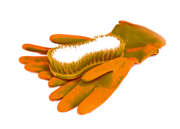 Brush and rubber gloves