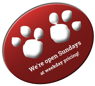 open-sundays-badge-red-400
